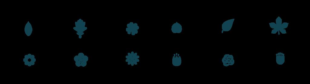 détail pictogramme plaquette